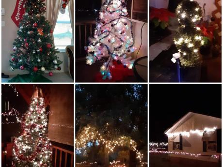A grid of 6 images showing different scenes of Christmas lights and trees